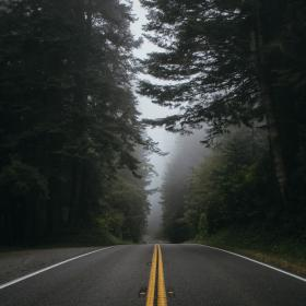 nature, roads, paths, streets, asphalt, forests, trees, fog, lines, perspective, zigzag