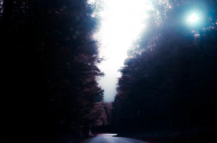 nature, road, paths, streets, forests, sky, clouds, fog, light, leaks, peek, bokeh