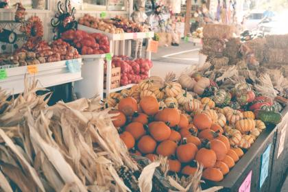 food, vegetables, market, corn, pumpkins, halloween, hay