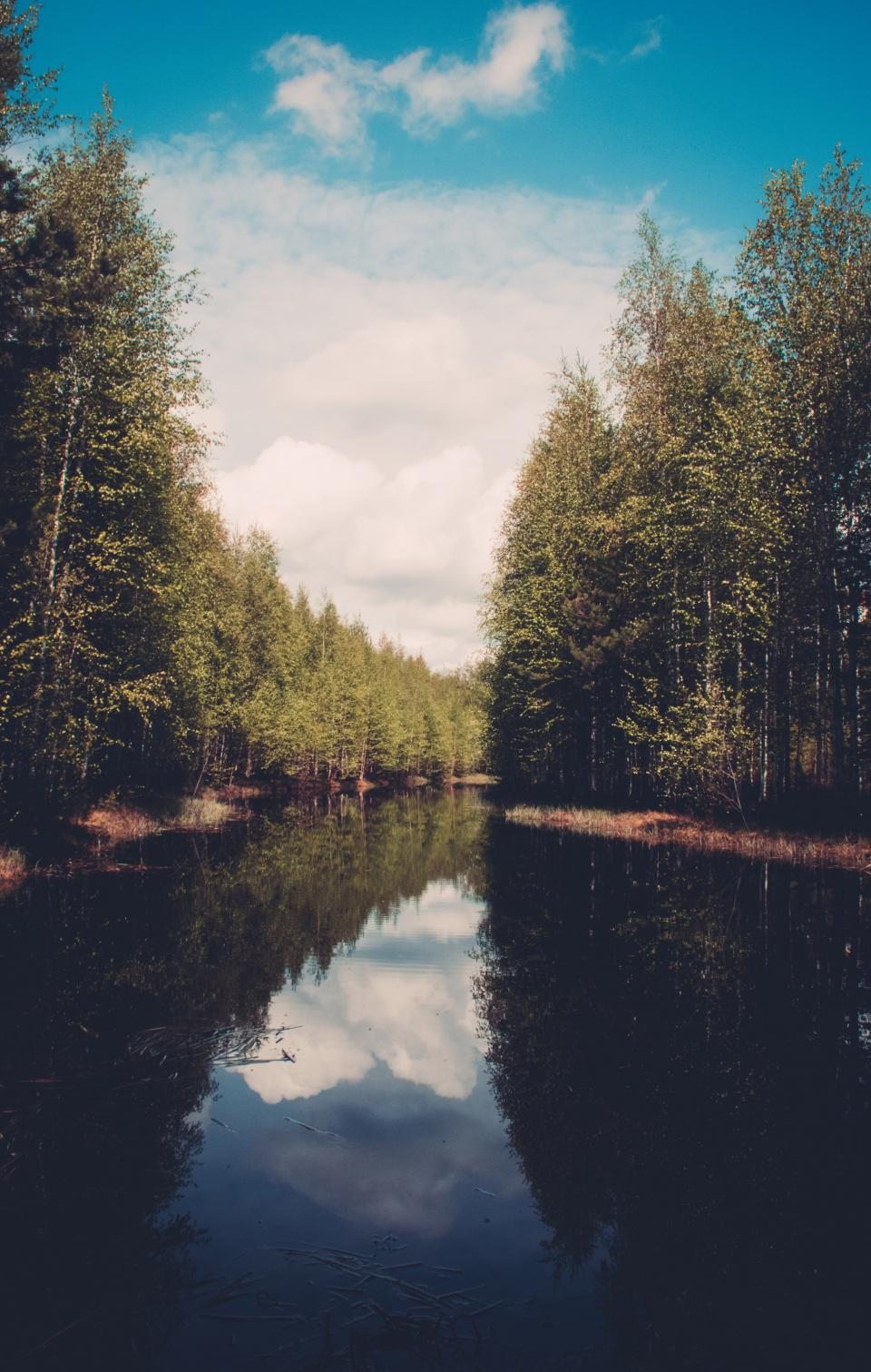 lake, river, water, reflection, trees, forest, woods, nature, outdoors, landscape, sky, clouds, sunny, summer