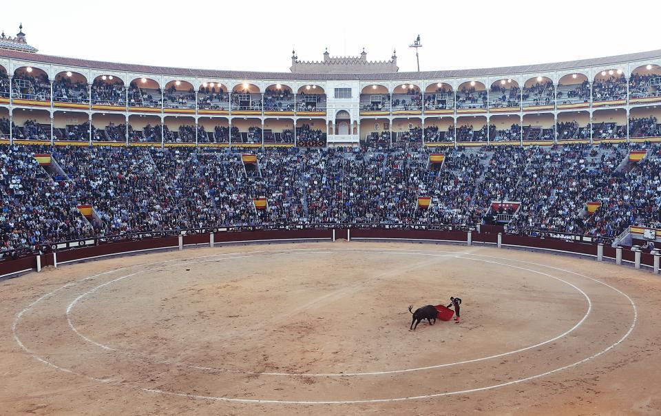 matador, bullfighter, torero, red, cape, ring, stadium, crowd, madrid, spain, flag, circle, spectators