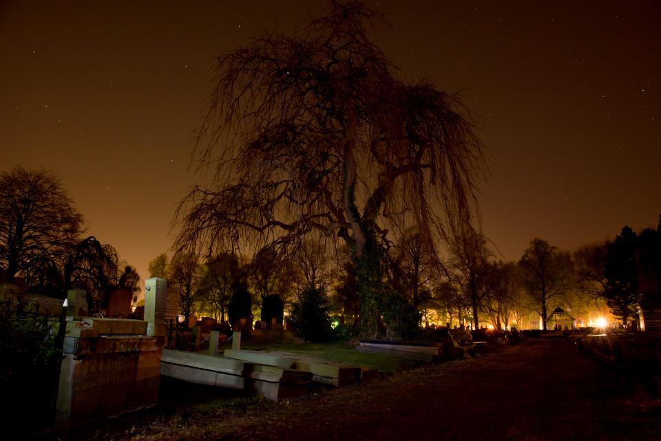 graveyard, gravestones, cemetery, tombstones, dark, night, scary, halloween