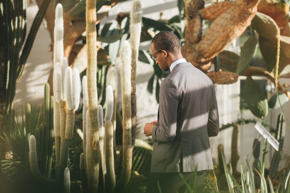guy, man, suit, fashion, people, eyeglasses, nature, plants, lifestyle