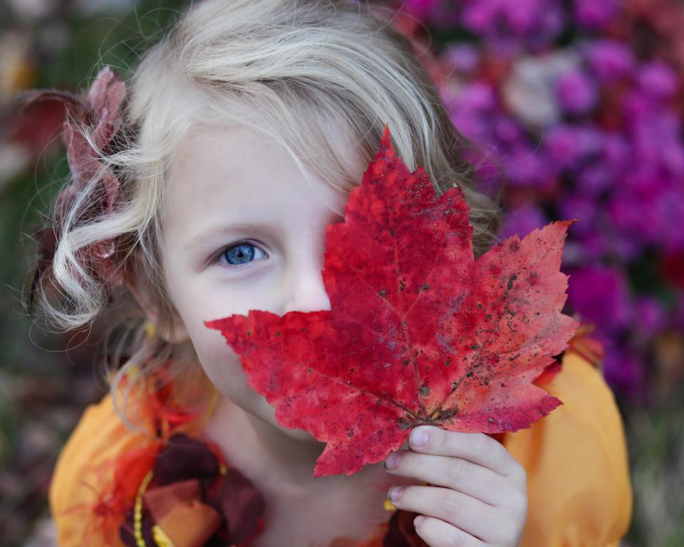 girl, kid, child, daughter, family, maple leaf, fall, autumn, nature, outdoors, happy, blonde, people