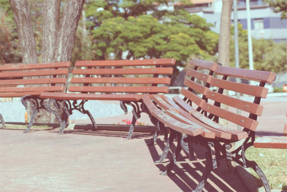 park, benches, sunny