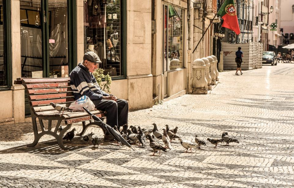 old, man, elderly, senior, people, bench, sitting, pigeons, birds, animals, sidewalk, city, urban, buildings, lifestyle, Portugal, flag
