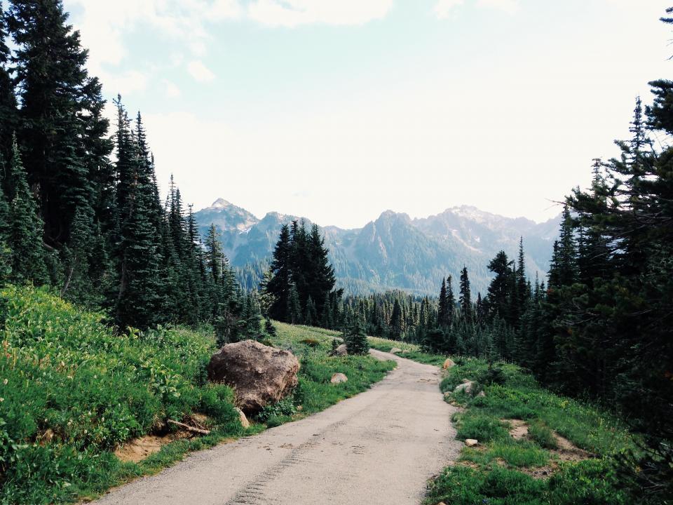 landscape, path, trail, grass, trees, nature, mountains, hills