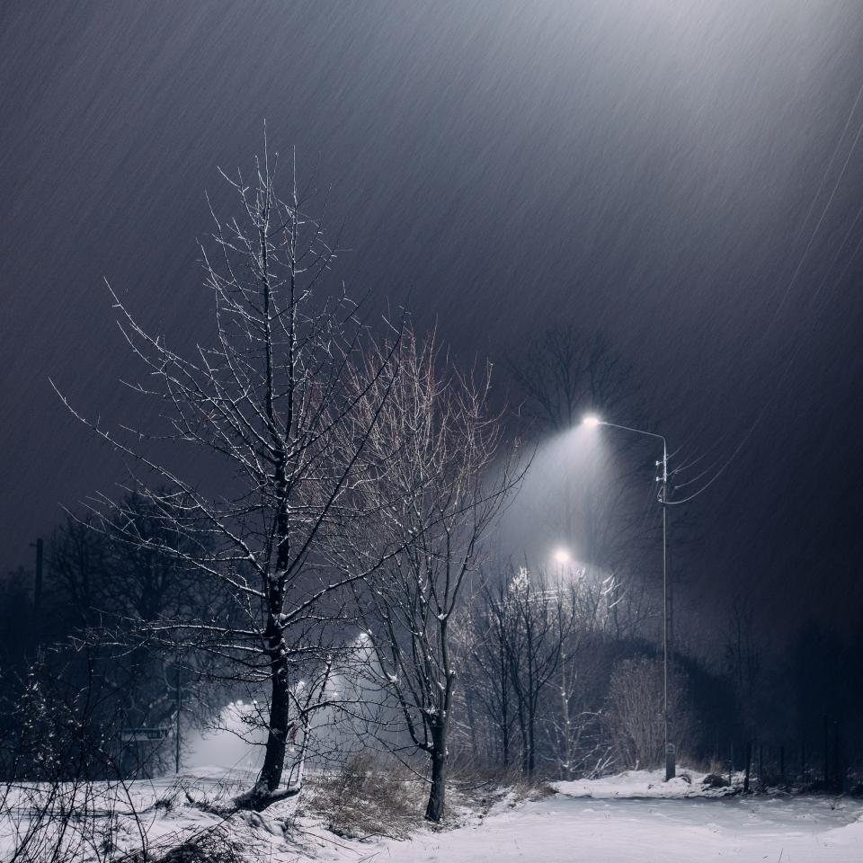 snow, dark, night, trees, lights, lamp posts, sky, outdoors, nature