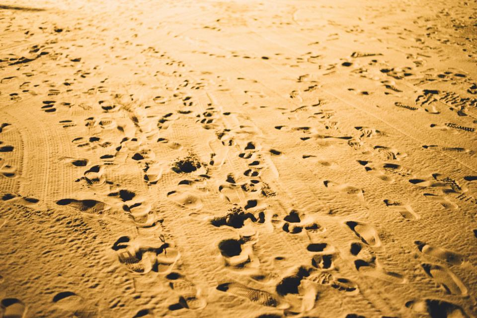 sand, beach, footsteps, footprints, shore, sea, ocean, summer