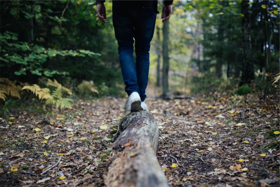 wood, log, walking, hiking, trekking, trail, forest, woods, nature, leaves, dirt, people, jeans, shoes