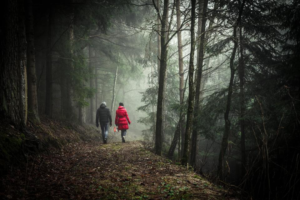 girl, woman, guy, man, people, walking, trekking, hiking, forest, woods, trees, nature, dirt