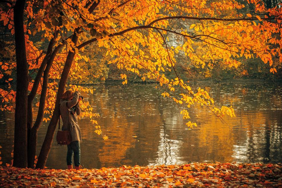 autumn, fall, leaves, colors, water, lake, girl, woman, camera, picture, purse, bag, coat, nature, outdoors, sunny