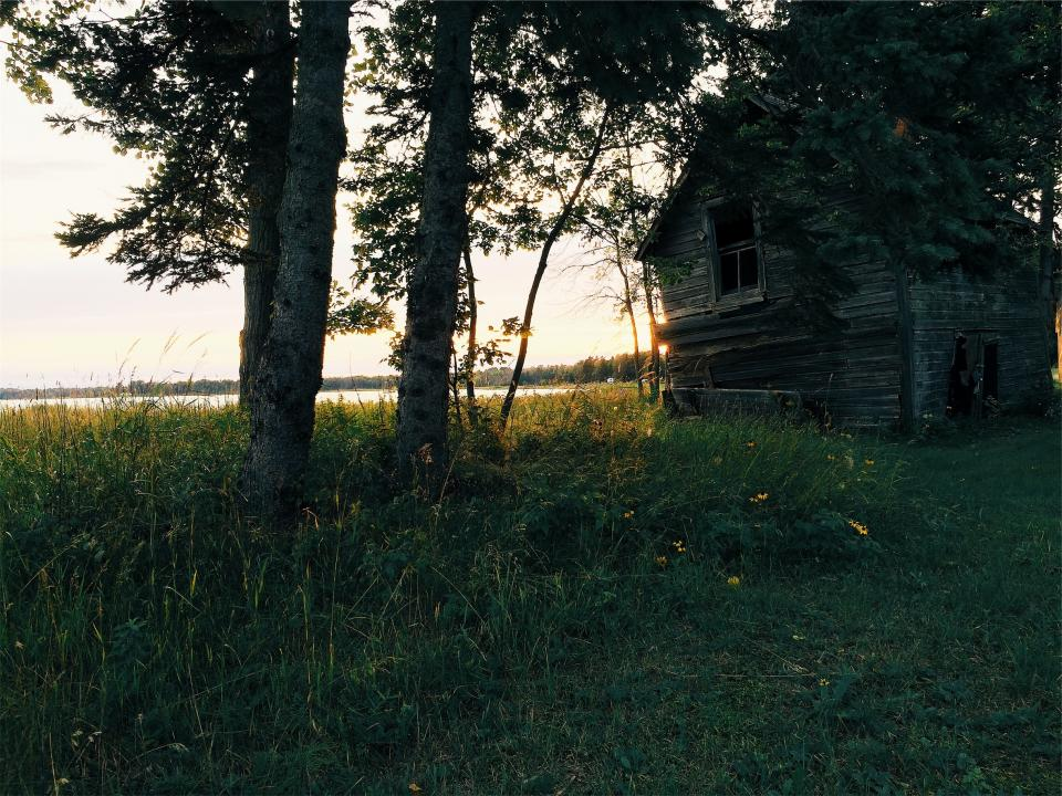 green, grass, rural, cottage, shed, wood, trees, lake