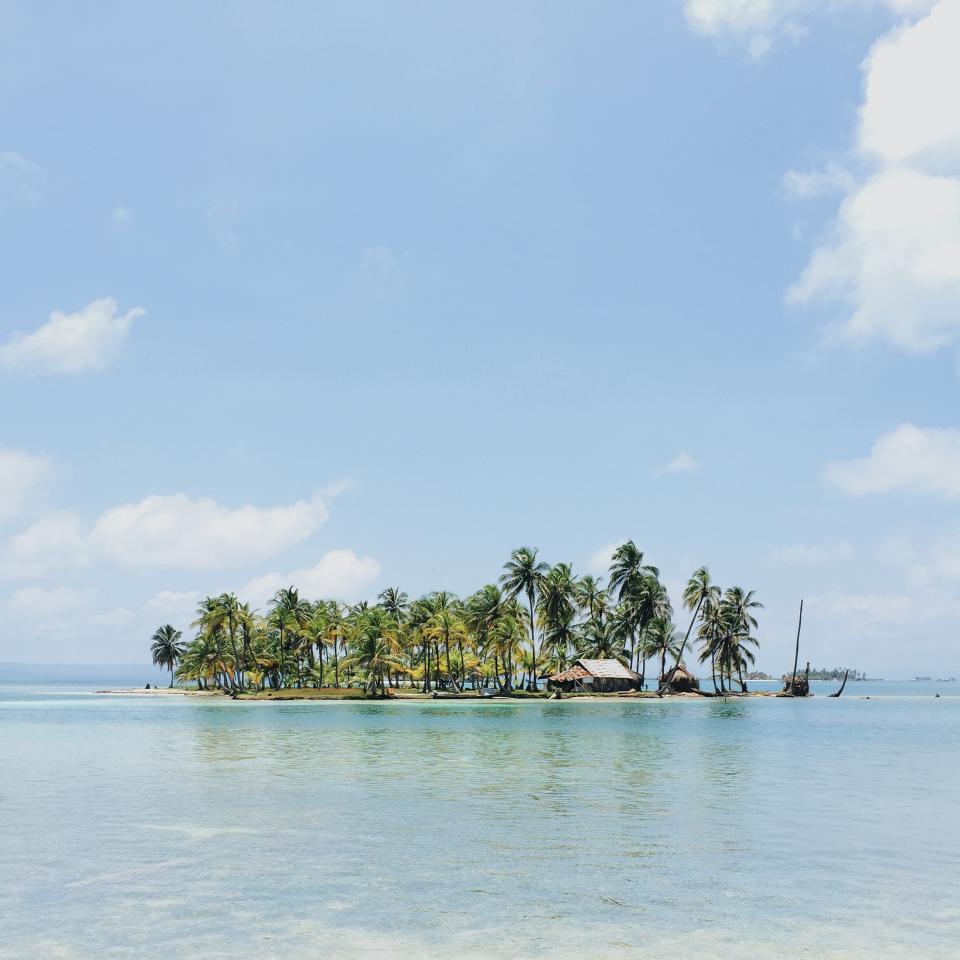 palm trees, island, tropical, vacation, travel, trip, summer, paradise, ocean, sea, water, blue, sky, sunshine