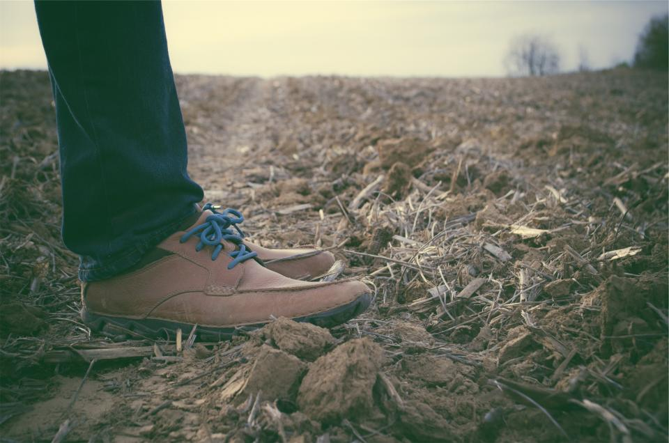 shoes, laces, jeans, denim, fashion, clothes, soil, dirt, wood chips, field, country, rural