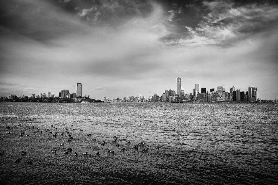 New York, skyline, buildings, architecture, city, NYC, sky, clouds, cloudy, water, birds, black and white