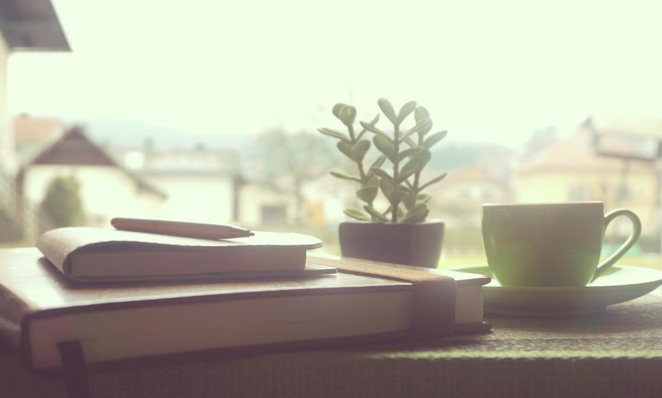 books, reading, study, learning, school, office, home, business, coffee, tea, cup, window