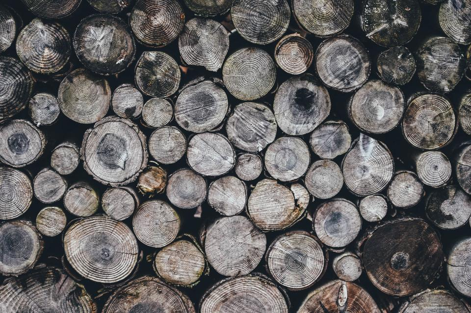 wood, logs, texture, nature
