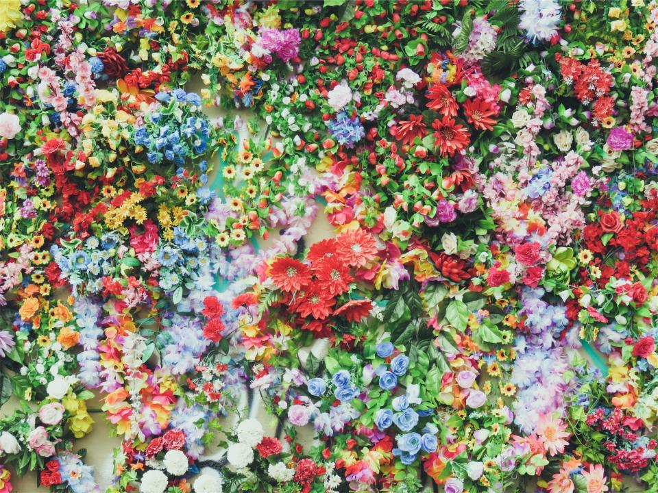 flowers, colors, colours