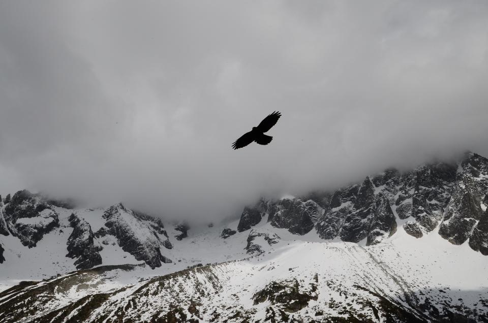 clouds, sky, grey, bird, flying, snow, cold, winter, mountains, cliffs, rocks