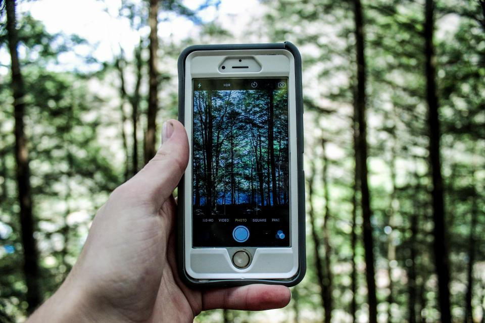 guy, man, male, people, hand, hold, technology, iphone, mobile, smartphone, photography, nature, trees