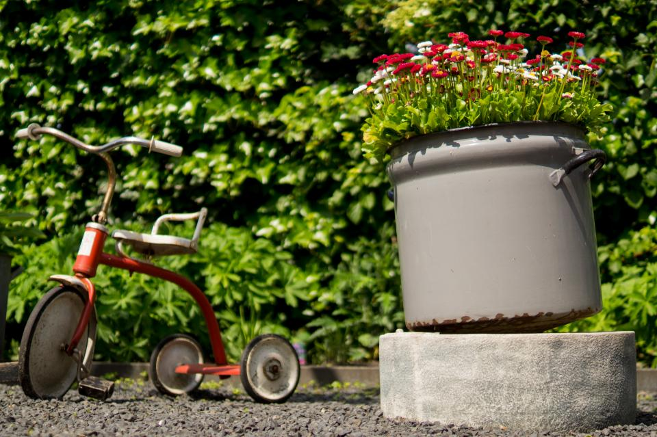 tricycle, pots, flowers, garden, leaves