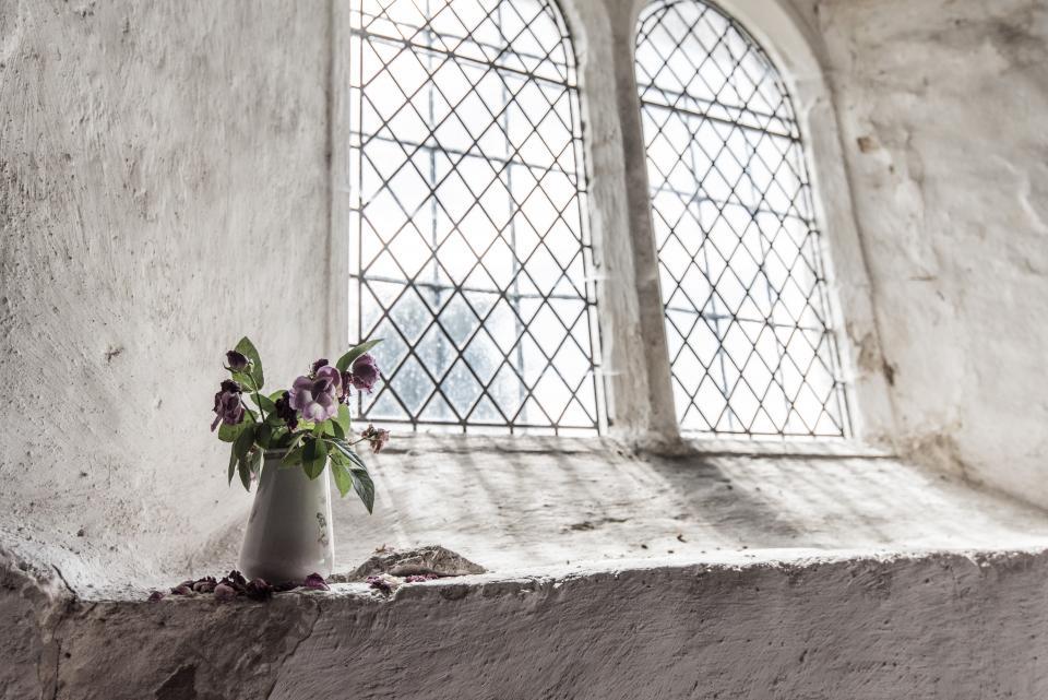 window, sunlight, flowers, bouquet, vase, concrete, white