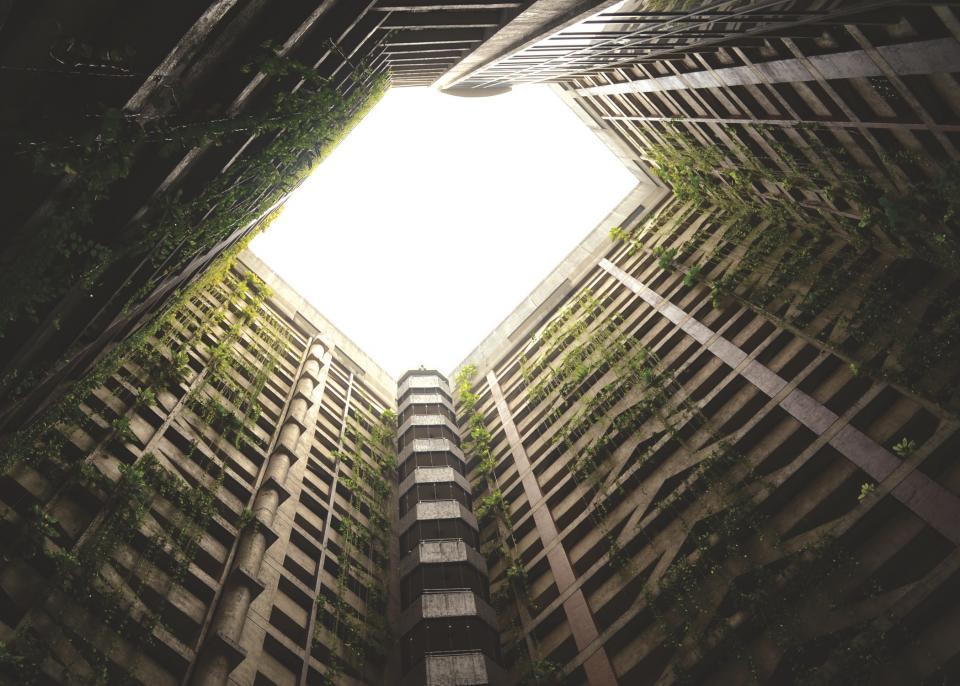 skylight, building, concrete, structure, building, vines, architecture