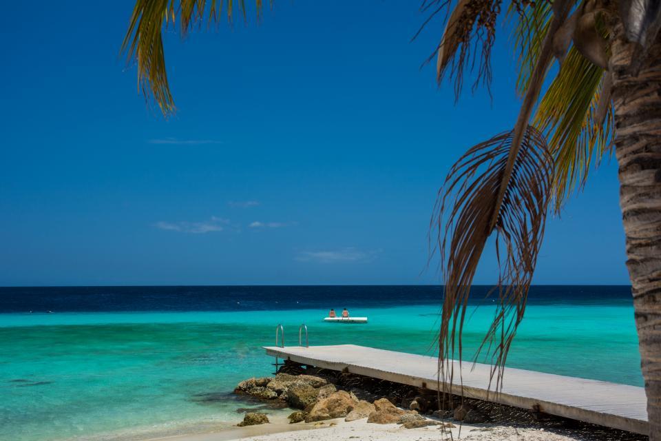 beach, sand, water, ocean, sea, caribbean, tropical, wood, dock, sky, palm tree, vacation, paradise