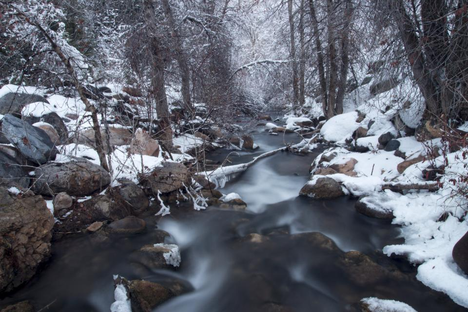 river, stream, water, winter, snow, rocks, cold, trees, forest, nature, outdoors