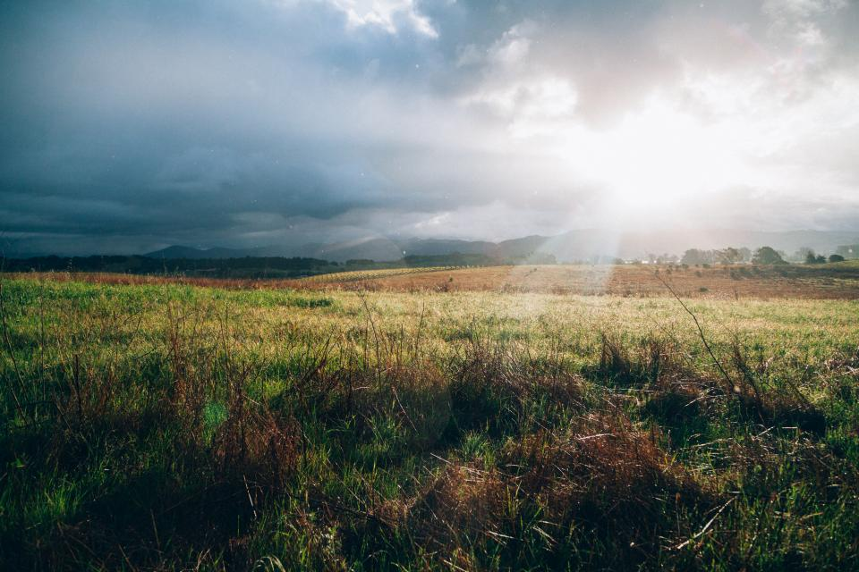 grass, field, rural, countryside, landscape, nature, sunbeams, sun rays, clouds, cloudy, sky, outdoors