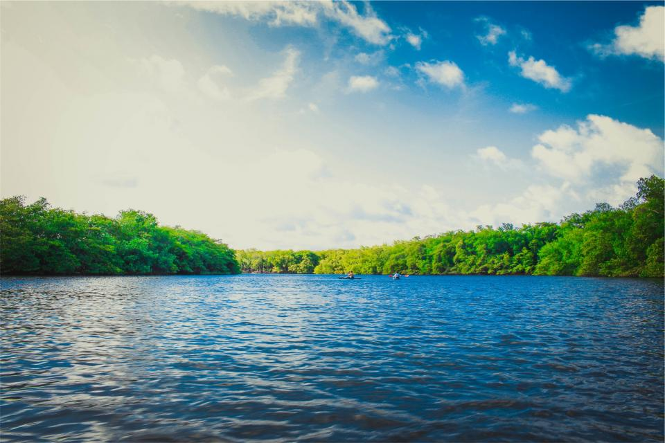 lake, water, sunshine, summer, canoe, kayak, trees, blue, sky, clouds, landscape, nature