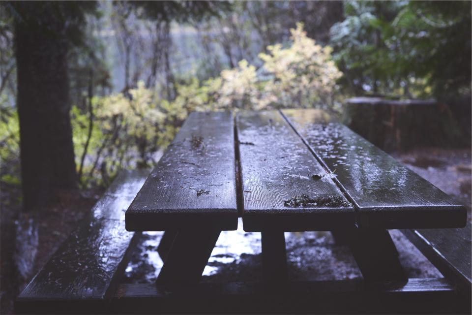 picnic table, wood, raining, wet