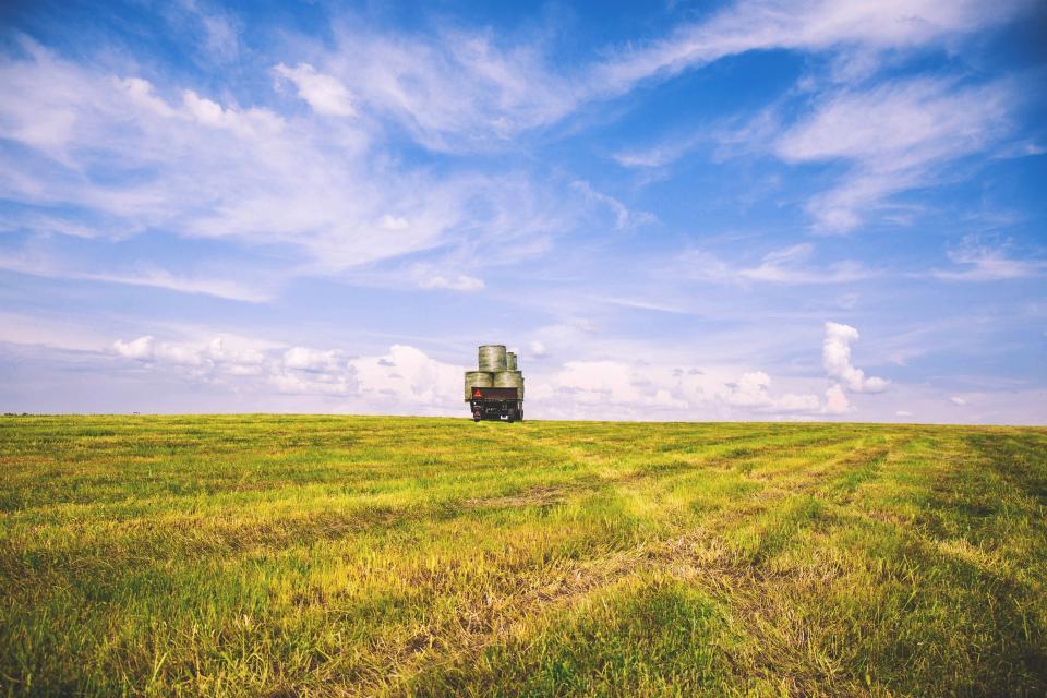 nature, plains, field, grass, harvest, sky, clouds, horizon, truck, balots