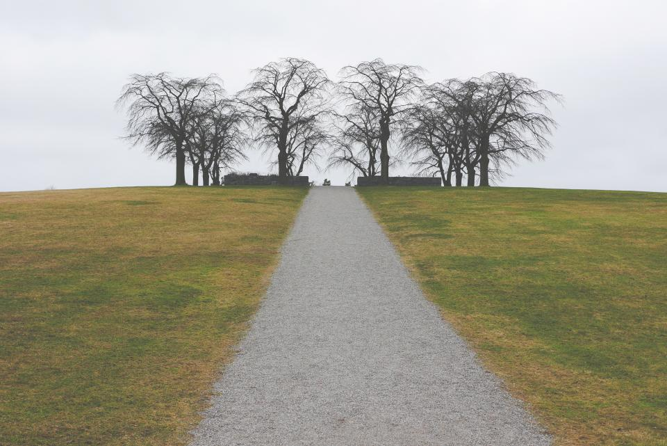 grey, sky, grass, path, gravel, trek, trees