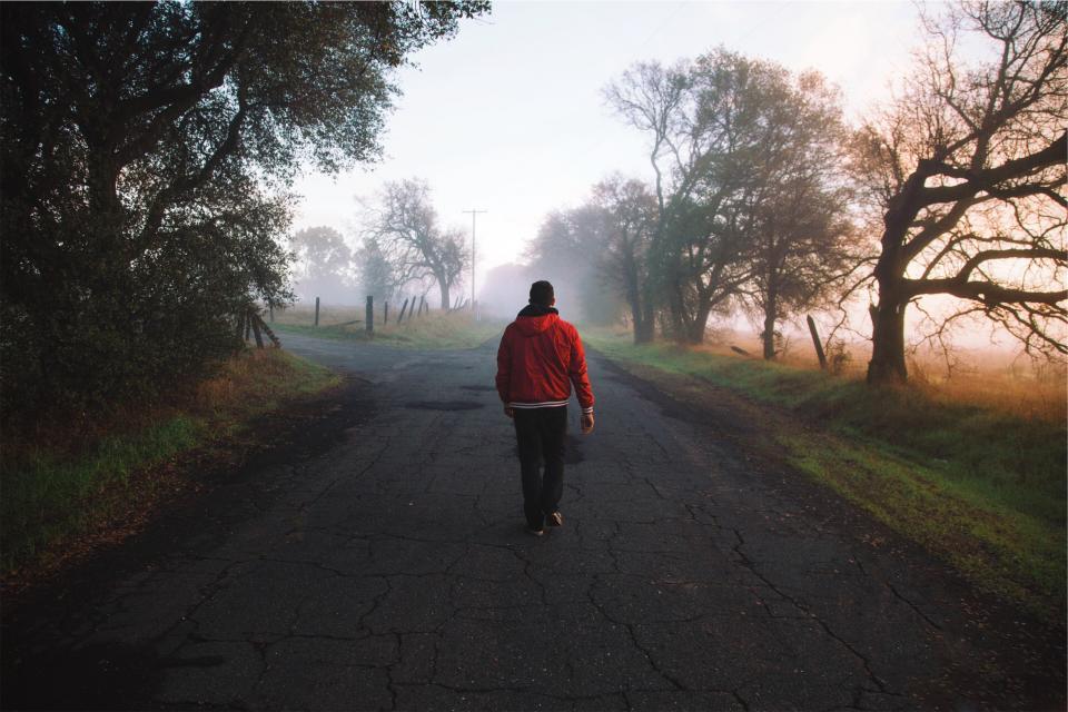 guy, man, jacket, red, hood, grass, rural, country, road, pavement, walking, pedestrian, trees