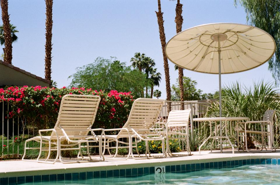 swimming pool, umbrella, patio chairs, palm trees, flowers, plants, sunshine, hot, backyard