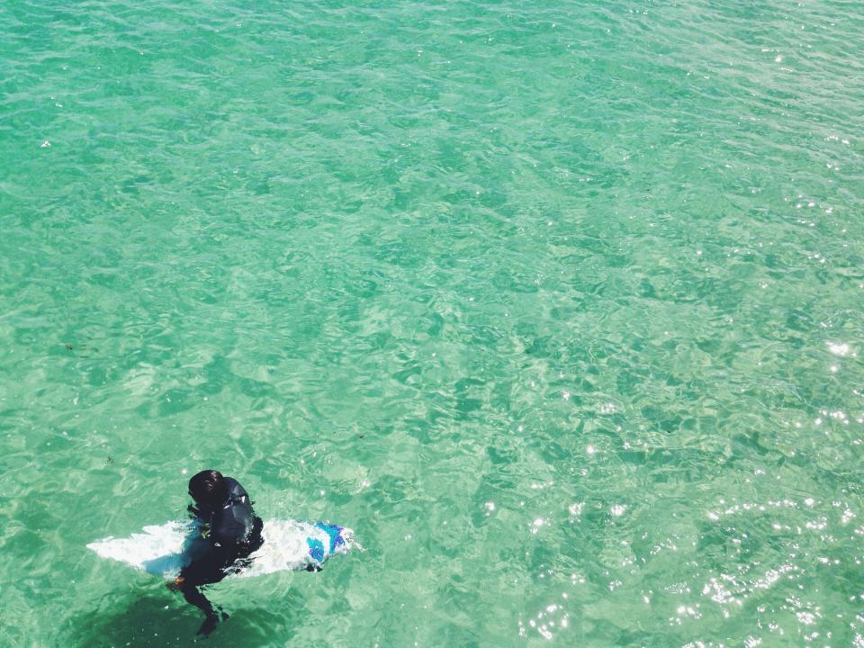 surfer, surfing, surfboard, wetsuit, water