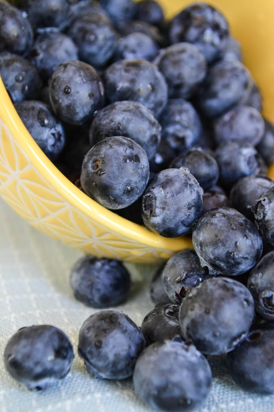 blueberries, fruits, food, bowl, healthy