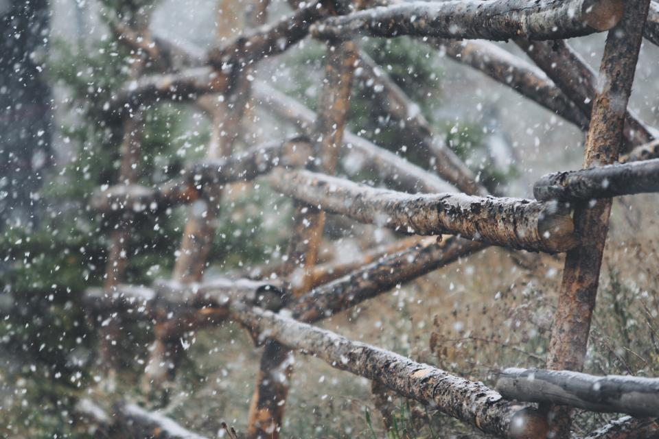 wood, fence, sticks, winter, snow, christmas