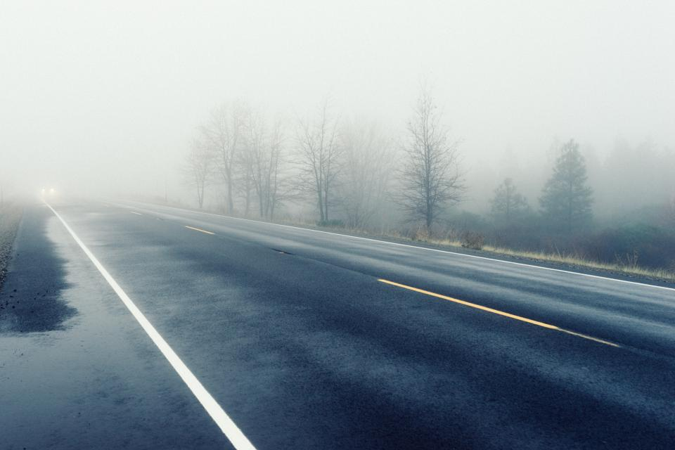 road, headlights, car, fog, haze, trees