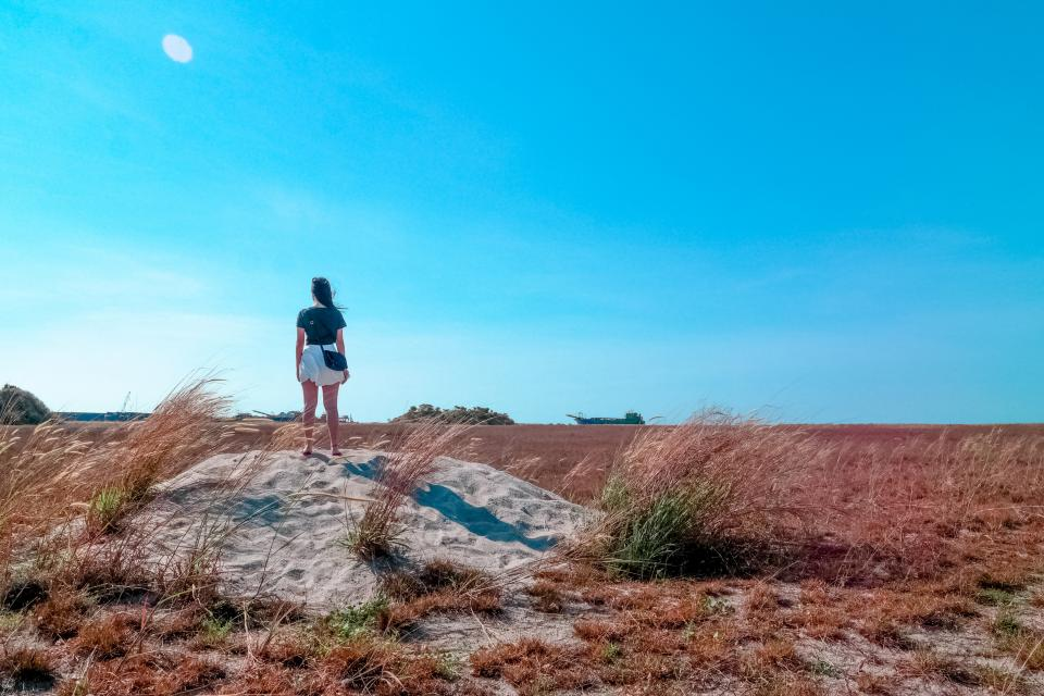 woman, girl, lady, people, back, contemplate, stand, nature, ground, soil, grass, sky, horizon, clouds