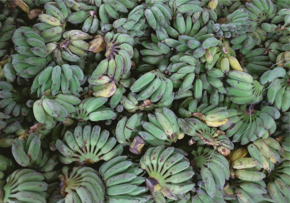plantains, bananas, fruits, food, healthy