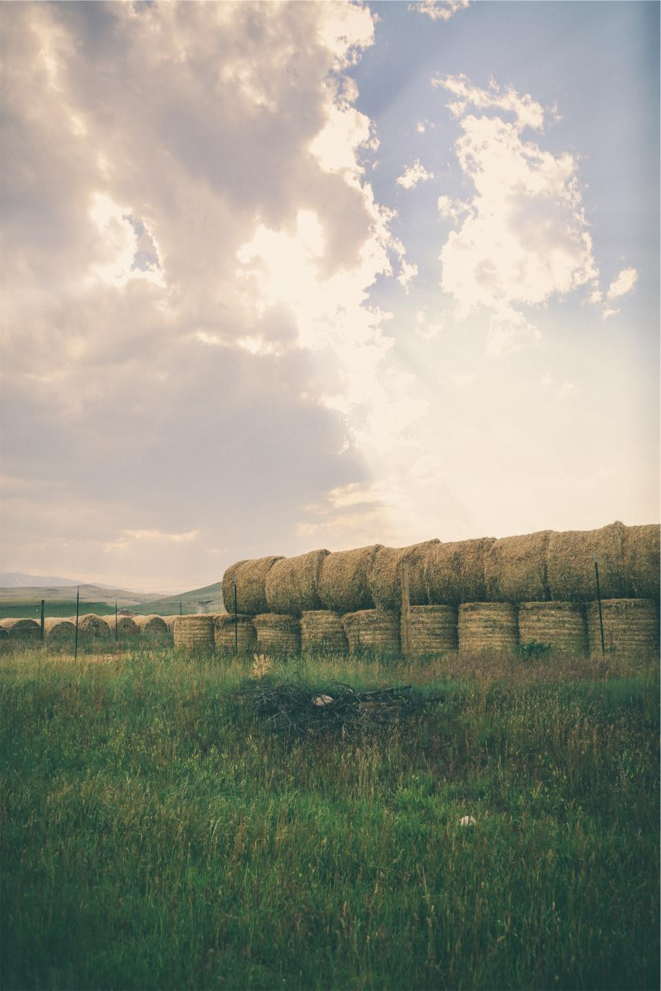 hay, bales, grass, farm, fields, rural, country