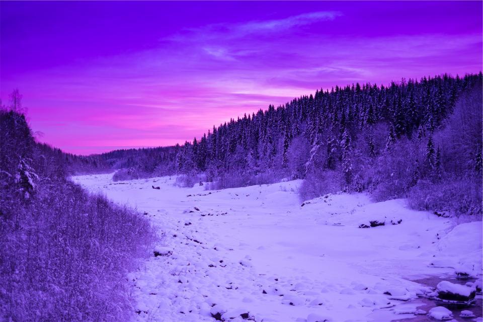 sunset, purple, sky, dusk, snow, winter, trees, forest