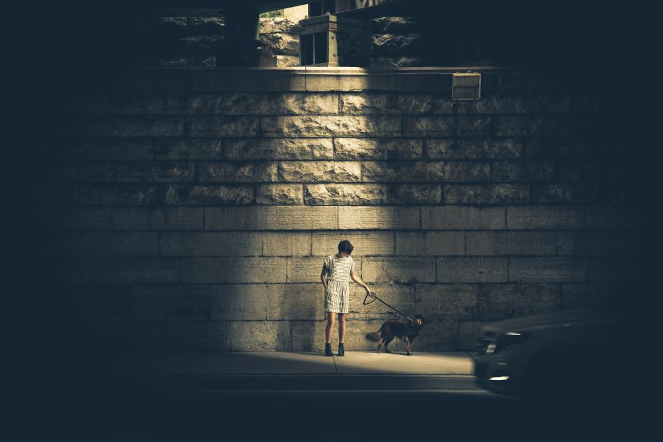 girl, woman, dress, skirt, dog, pet, animal, leash, dark, street, road, sidewalk, brick, wall, stones, boots, light, shine