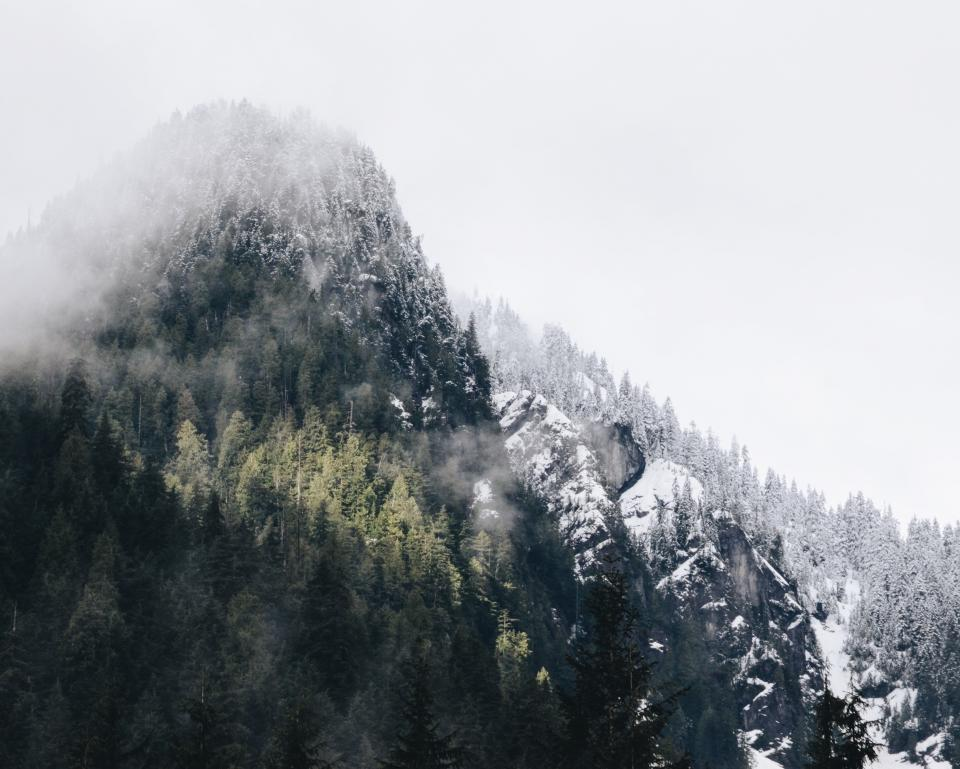 mountains, hills, snow, cold, winter, trees, forest, woods, nature, outdoors, adventure, sky, fog