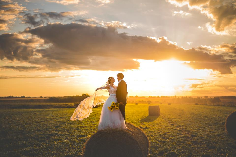 wedding, pre nuptial, marriage, couple, love, happy, man, woman, gown, suit, flowers, sunflower, sunlight, sunshine, clouds, sky, grass