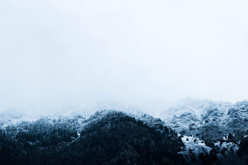 snow, winter, trees, cold, blizzard, sky, white, mountains, nature