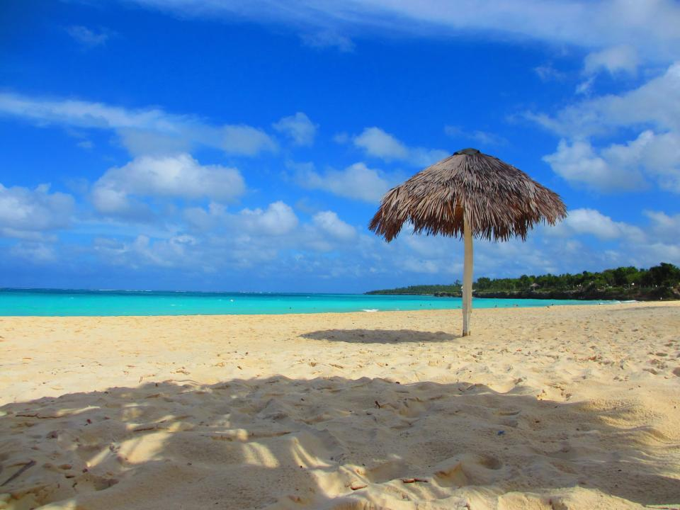 beach, tropical, vacation, sand, umbrella, shade, water, ocean, sea, blue, resort